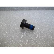 Болт крепления маховика 1 штука М10x19,5 +T4 +LT  SACHS 3096005000