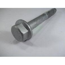 Болт заднего рычага наружный VAG N10523102