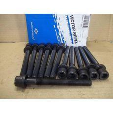 Болт головки блока комплект 12 штук Victor Reinz 14-32047-02