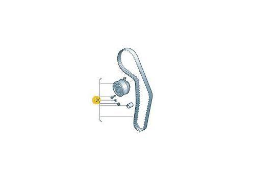 Ремкомплект ГРМ с роликами AXB AXC,BRR,BRS VAG 038198119A